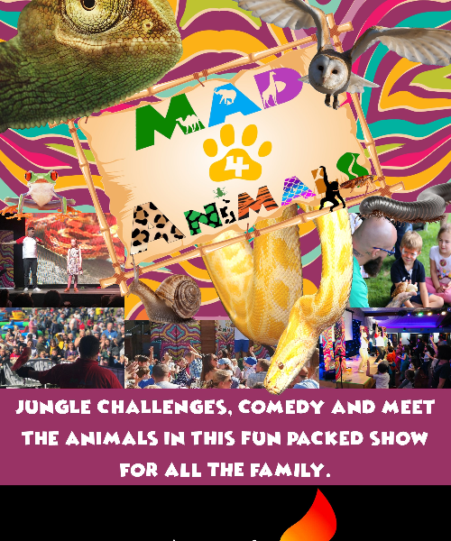 Mad 4 Animals