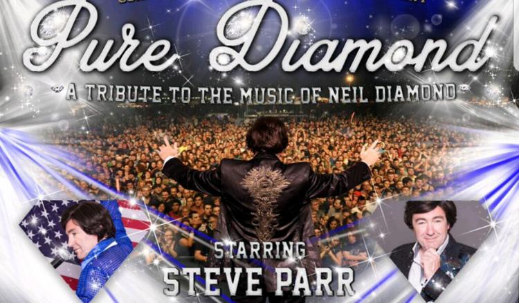 The Pure Diamond Tribute Show